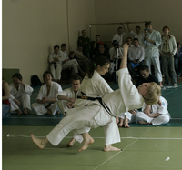 Айкидо 2007
