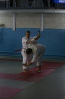 и Кихон ваза (17 техник против ножа) - это базовая техника соревновательного айкидо - также ката.