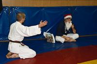 Объяснение политической обстановки сенсею, с подачей челобитной на празднование Нового года.